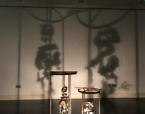 Monstrous shadows